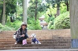 浄知寺前大