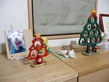 クリスマス窓