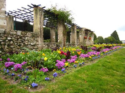 シャガール前の庭