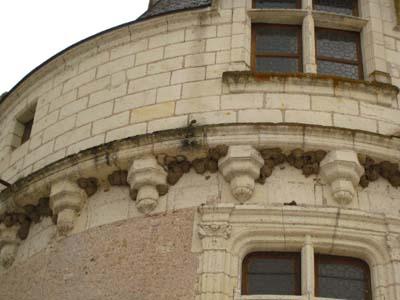 シュノンソー城井戸の巣