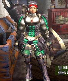 ゲリョスD・剣士