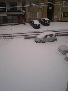 雪国だね!