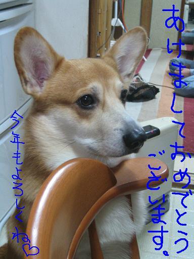 IMG_7293-2.jpg
