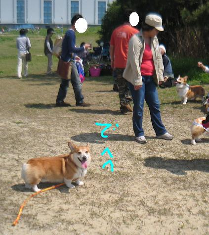 IMG_7549-2.jpg