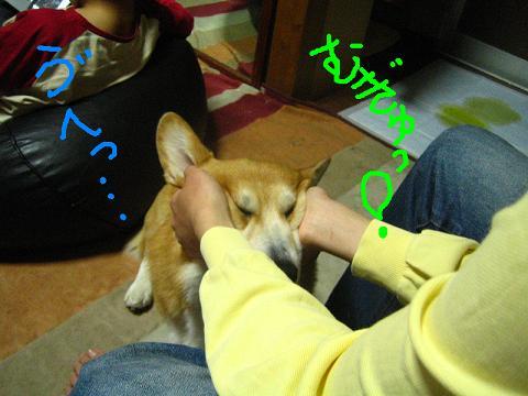 IMG_8310-2.jpg
