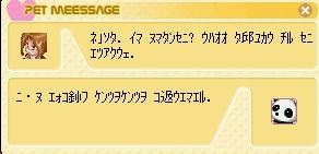 TWCI_2005_5_11_10_10_5999.jpg
