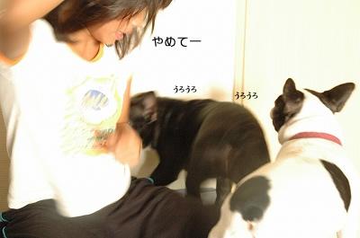 DSC_5552.jpg