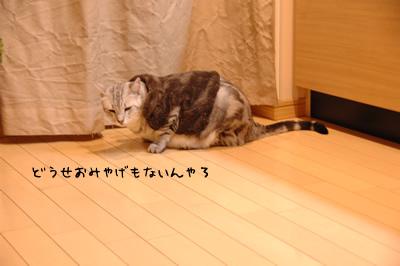 DSC_7939.jpg