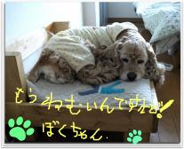 繧ゅ≧逵?縺溘>繧薙〒縺兩convert_20120412024212