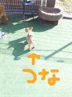 dc120506 コピー1(修整1)