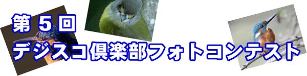 titel_5.jpg