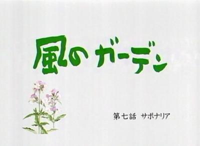 風のガーデン 第七話 「サポナリア」