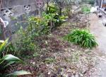 garden0220-2.jpg