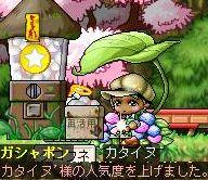 Maple090816_104150.jpg
