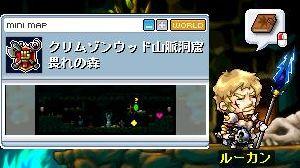 Maple091101_221213.jpg