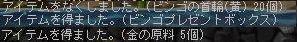 Maple091108_002938.jpg