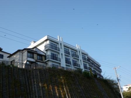 日間賀島05