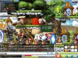 Maple110309_132838.jpg
