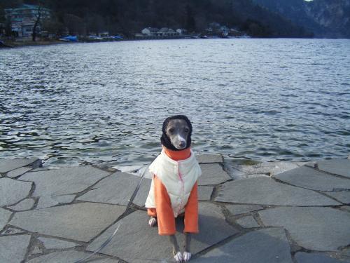 蜈・ヲケ縲?+002_convert_20081209152732