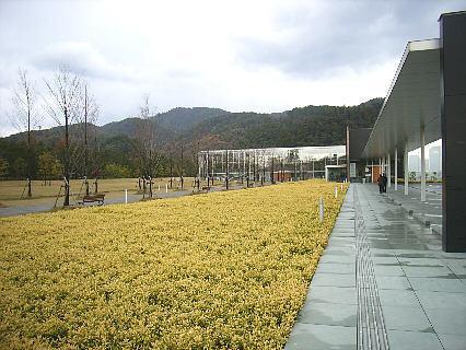 izumomaki201129a.jpg