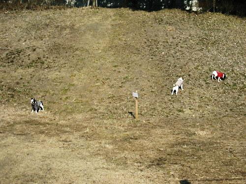10長岡公園093