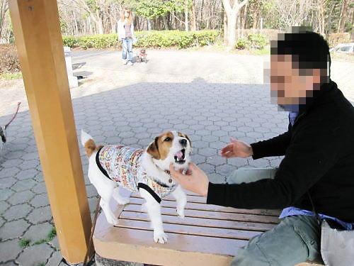 10長岡公園181