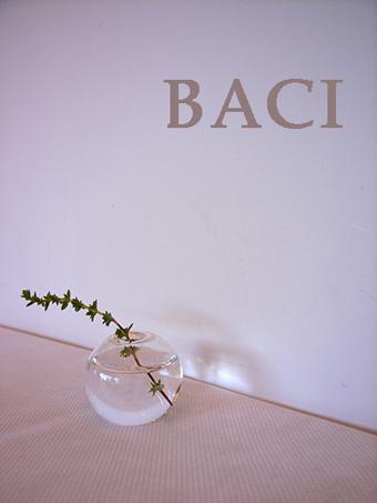 obaci09101