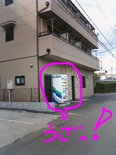 20050131190948.jpg