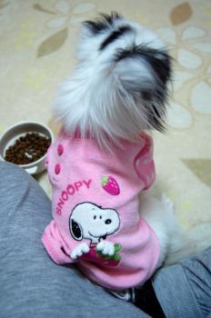 ヌーピー洋服1