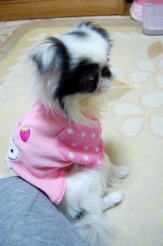 ヌーピー洋服2