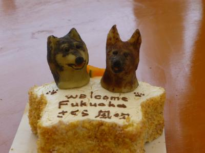WELCOME CAKE!