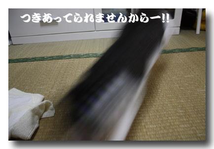 09121605.jpg