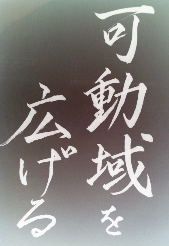 photo_20120125222215.jpg