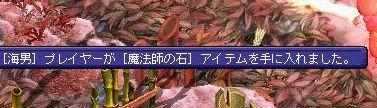 20060614101116.jpg