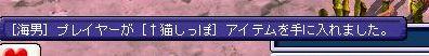 20061122203158.jpg