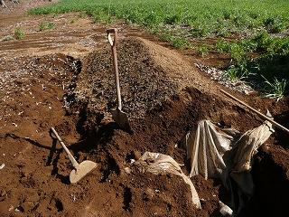 セレベスを埋めた小山