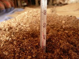 二次発酵開始2日目のボカシ肥料の温度(午前11時)