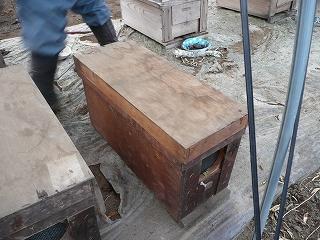 巣板を小さい巣箱へ・3