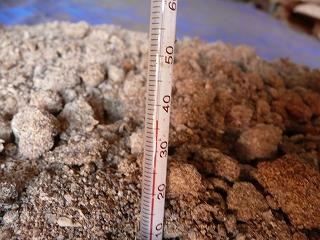 二次発酵開始8日目のボカシ肥料の温度(午前8時)