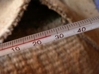 二次発酵開始10日目のボカシ肥料の温度(午前8時)