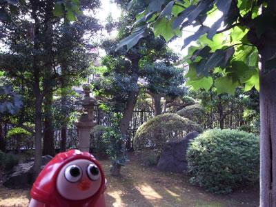ikegami02.jpg