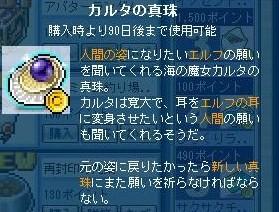 Maple111130_202555.jpg