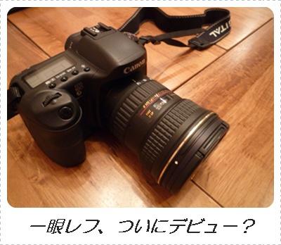 2009_09_25jpg.jpg