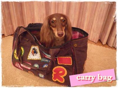 carry_bag.jpg