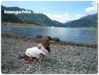 kaaguchiko_bangai1.jpg