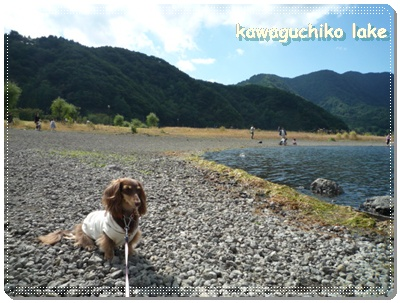 kawaguchiko_bangai2.jpg