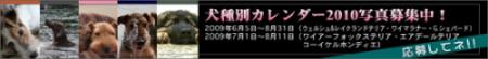 banner_calendar2.jpg