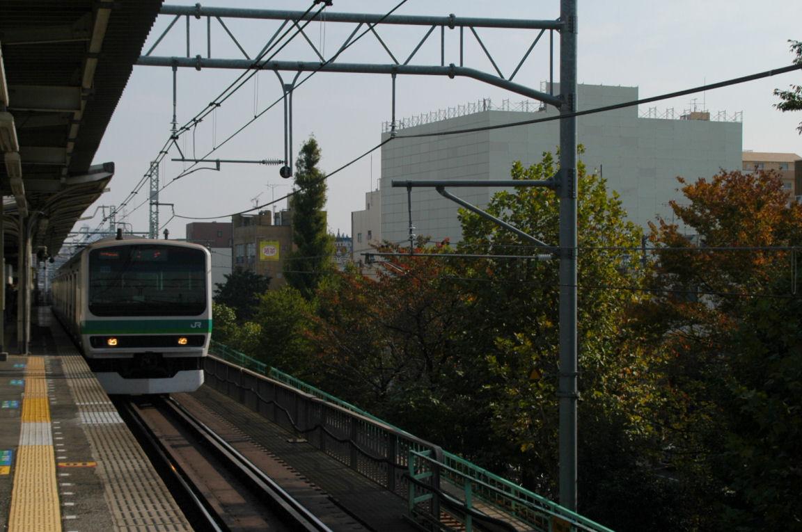 nippoli0063.jpg