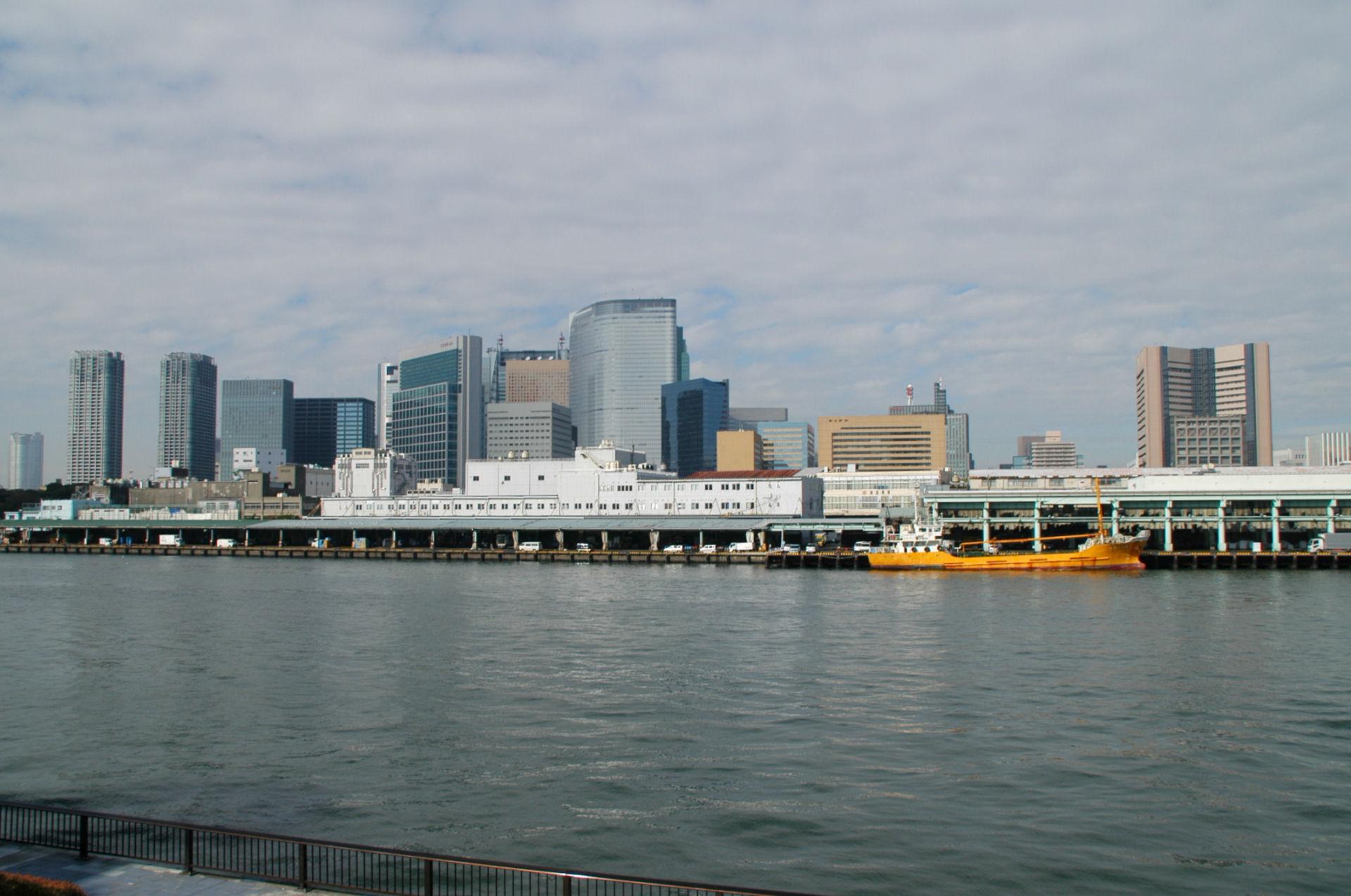 tsukiji0105.jpg