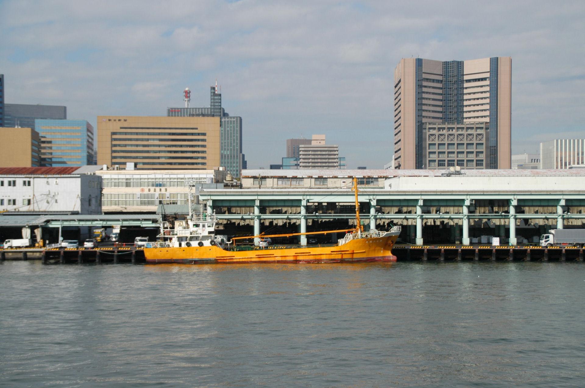 tsukiji0106.jpg